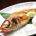 料理メニュー写真焼き魚のどぐろ