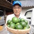 契約農家さん直送の食材をご堪能あれ!日向夏・日南レモンをお取り寄せしている契約農家・森山柑橘園様です。