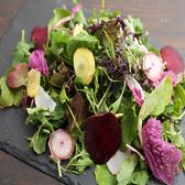 地元で無農薬、無肥料で育てた新鮮野菜をふんだんに使用した自慢のオーガニックサラダ。季節によって内容が変わります。