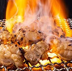 本格炭火焼肉 閃の特集写真