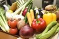 【こだわりの野菜】美味しいお料理や、美味しいお酒を♪