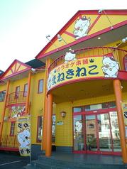 カラオケ本舗 まねきねこ 札幌手稲店の写真