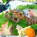 料理メニュー写真車えび刺身/生ウニ/鯨盛り合わせ/鯨ベーコン