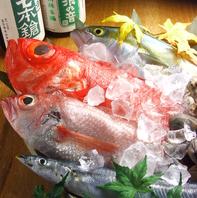 毎朝中央市場で目利きして鮮魚を仕入れてます!!