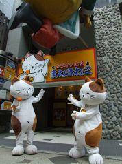 カラオケ本舗 まねきねこ 札幌南3条店の雰囲気1