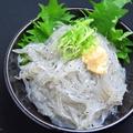 料理メニュー写真篠島 生しらすの刺身