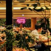 アグー豚しゃぶと沖縄料理 安里家 OSAKAの雰囲気3