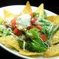 料理メニュー写真フレッシュサルサと自家製タコミートのメキシカンサラダ