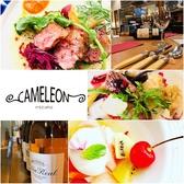 スペインバル&リストランテ カメレオンの詳細