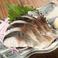 料理メニュー写真【北釧鯖使用】炙り〆サバ