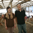 【希少な地鶏】指定を受けた35農家でしか生産が許されていない「幻のじとっこ」を使った自慢の宮崎料理!!限られた農家でしか生産できない宮崎地鶏頭♪
