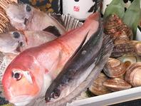 北海道出身の店主が毎朝目利きする魚貝
