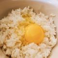 料理メニュー写真契約卵の玉子かけご飯