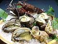 料理メニュー写真素晴らしき日本の四季の魚の数々!