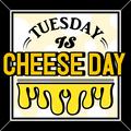"""料理メニュー写真毎週火曜日は""""CHEESE DAY""""♪こだわりのチーズを使用した究極メニュー3品をご提供致します!"""