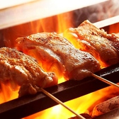 ねぎま 札幌のおすすめ料理2
