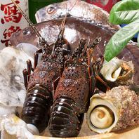 【厳選食材使用の料理多数】目でも楽しめる料理の数々!!