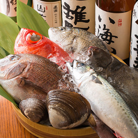 鮮度抜群の魚介を刺身や焼・煮物などでご提供致します!