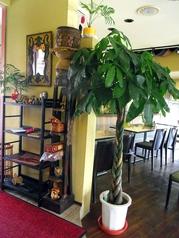 インド料理 アリマハールの雰囲気1