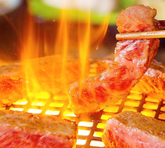 焼肉 道楽 ドウラク 新宿のおすすめ料理1