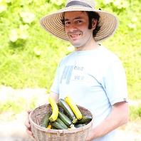 地産地消にこだわった無農薬野菜
