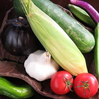 ◇市場直送旬の野菜◇