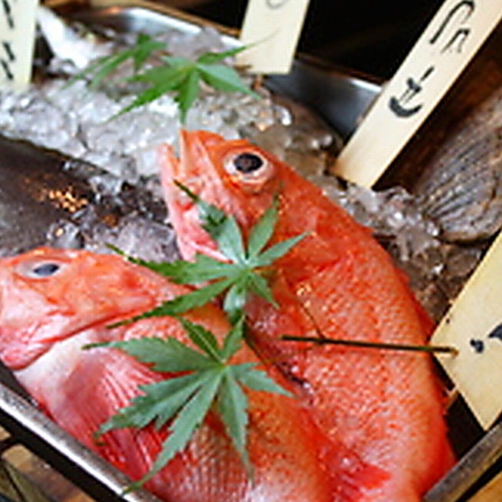 ~個室・貸切~おさかなや 魚魚権 目黒(ととげん) 店舗イメージ7