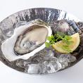 ≪★11/13~24★POWER OYSTER WEEK 生牡蠣半額!≫期間中、全ての生牡蠣が1ピース通常価格から50%OFFでご賞味いただけます☆この機会に是非お楽しみ下さい!