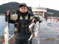 店主直々に釣った魚!