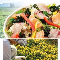 野菜『地産地消へのこだわり』