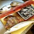 漁港からあがった新鮮魚介を毎日ご用意!