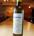 【お勧め1980円(税抜)ワイン《白》】インカンタム★スペイン《特徴》フルーティな青リンゴや花の香り。フレッシュでフルーティな辛口ワイン。酸味とのバランスが良い。