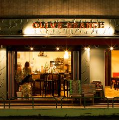 オリーブ ブランチ OLIVE BRANCHの雰囲気1