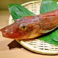 小田原鮮魚!ほうぼう