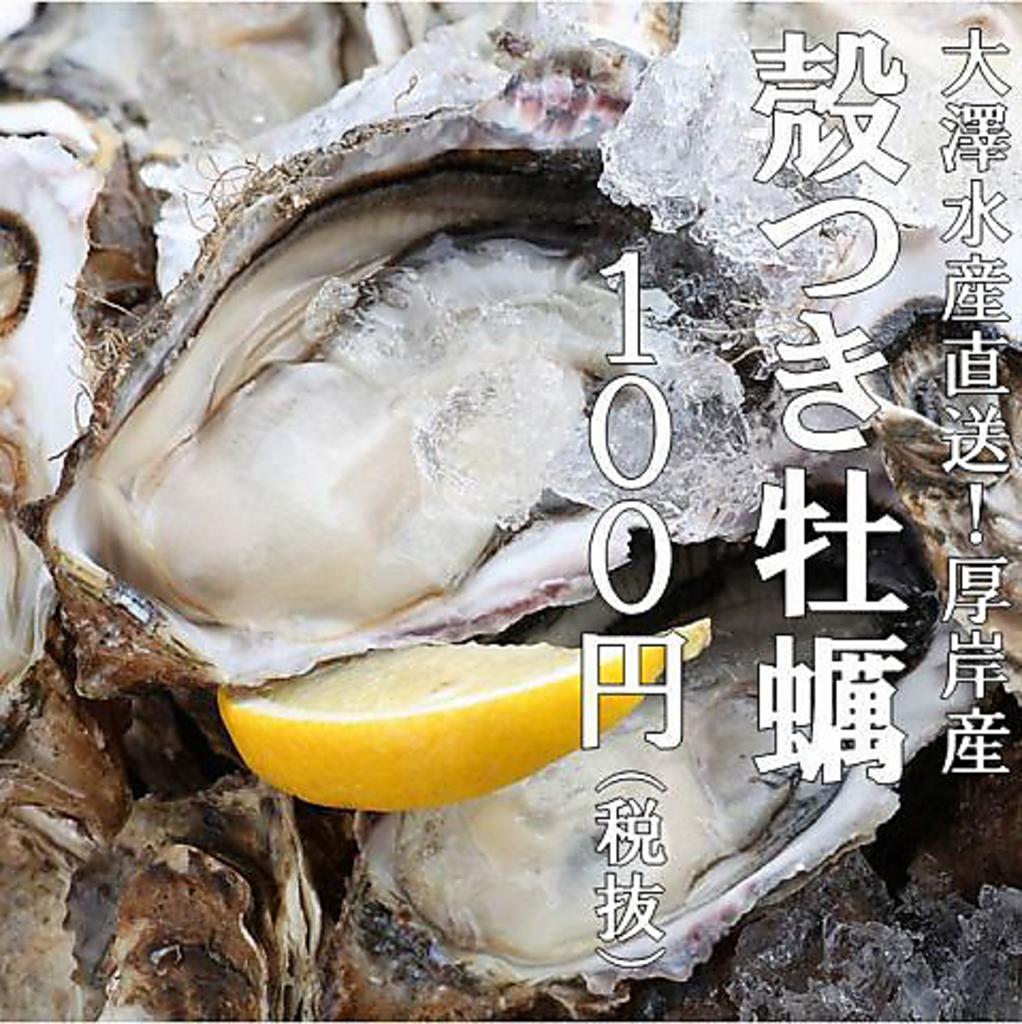 厚岸大澤水産毎日直送の【生カキ】1個100円!!