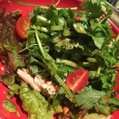 料理メニュー写真パクチキサラダ