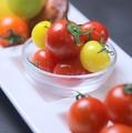 料理メニュー写真人気No3 トマト食べ比べ
