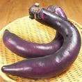 【熊本県/鹿本】石本さんの日本一長い!やわらか『大長なす』!日本で一番長くなる最長50センチにもなる茄子。見た目とは反対で果肉が柔らかくアクも少ないので生でもサラダでもOK!
