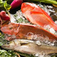 三浦半島で獲れた新鮮な魚を刺身やカルパッチョで♪