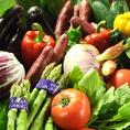 旬の新鮮な野菜を使った料理も多数ご用意しております!料理人の目利きが光ります!道内産アスパラや特大しいたけ、とうもろこしや舞茸など!!