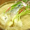【山形県/米沢】水耕栽培で育てられた『鷹山にんにく』。芽も根っこも全部食べられます。普通のにんにくより栄養価も高く、においも気になりません。