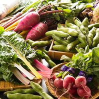 三浦半島自慢の新鮮野菜♪ご提供する素材はこだわり◎