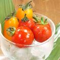 【ミニトマト】少し変わったこだわりのミニトマトを随時食べ比べで2.3種類ご用意。(シュガーキャロルミニトマト等)