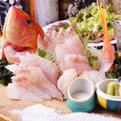 和み家 魚えんのおすすめ料理2
