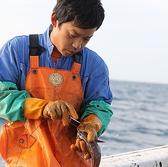 魚の味は、水揚げされた瞬間に決まると言っても過言ではありません。魚を口にする時の一瞬の味わいは、その魚を始めに手に取る漁師のひと手間から作られていくのです。当店が全国の漁港へと自ら足を運び、魚を熟知した漁師と共に、水揚げ直後の魚の扱いや締め方・温度管理に至るまで徹底的に拘る理由はそこにあります。