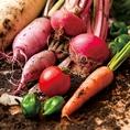 農家直送の新鮮な地産野菜。