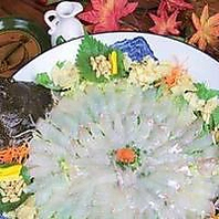 呼子港でとれた新鮮な鮮魚のお料理をお楽しみください