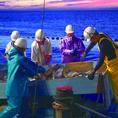3.今日もピチピチ鮮魚を輸送します!