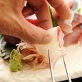 料理メニュー写真北海道、青森直送の魚介類 神奈川県佐島の地魚のおすすめ多数