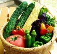 全国各地の野菜が常備15種以上!定番のものから季節の旬野菜まで、様々取り揃えました。毎日新鮮な野菜を入荷しております。「バーニャカウダ」や各種サラダなど、野菜の旨味をたっぷり味わえる逸品を多くご用意。ヘルシーに女子会を楽しむ際も【いいだばし畑】はうってつけです◎